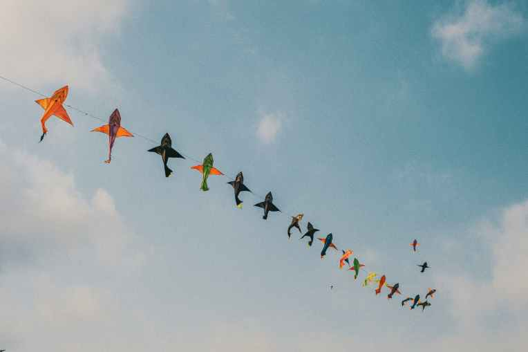 Kites flying in the wind