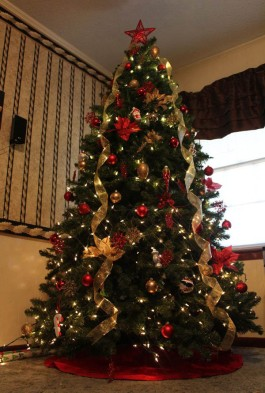 most-beautiful-christmas-trees-12